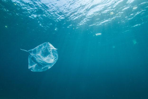 海洋汙染多嚴重?世界最深的海溝底部發現塑膠袋